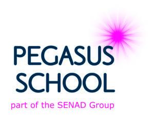The SENAD Group