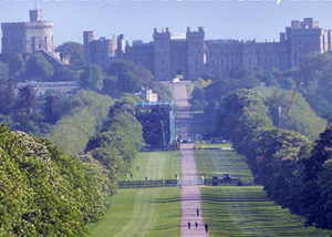 Parallel Windsor