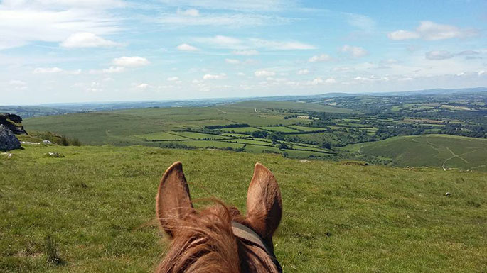 Go Beyond Discover a Different Dartmoor